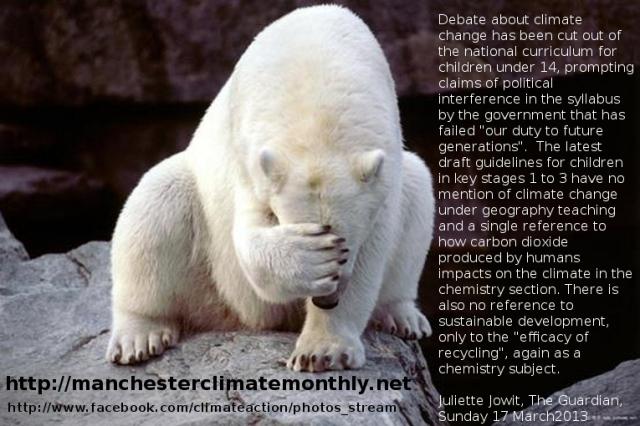 polarbearstupidiswinning