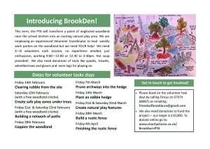 Brookden leaflet