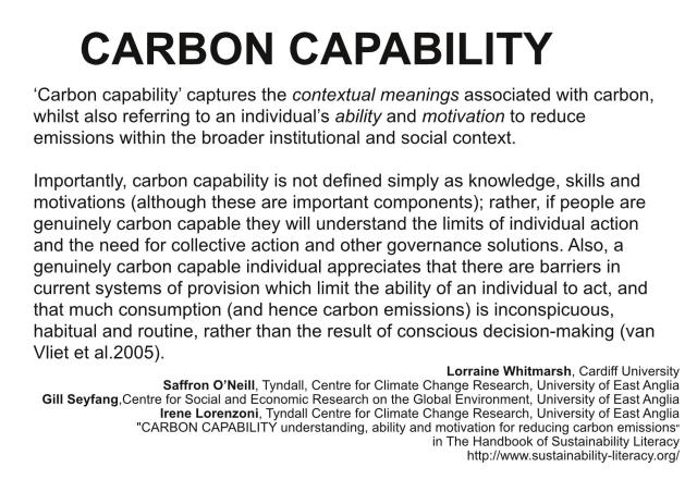 carbon capability