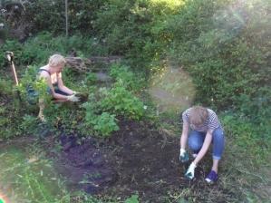 Sam and Monika clearing Withington landshare