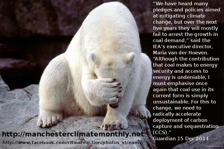 Hairless Polar Bear Polarbearcoaldemandgrowth